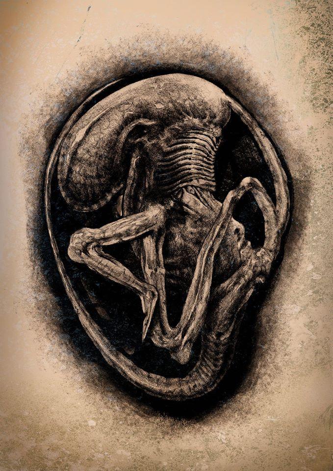 Dane Hallett - Alien Covenant (11)