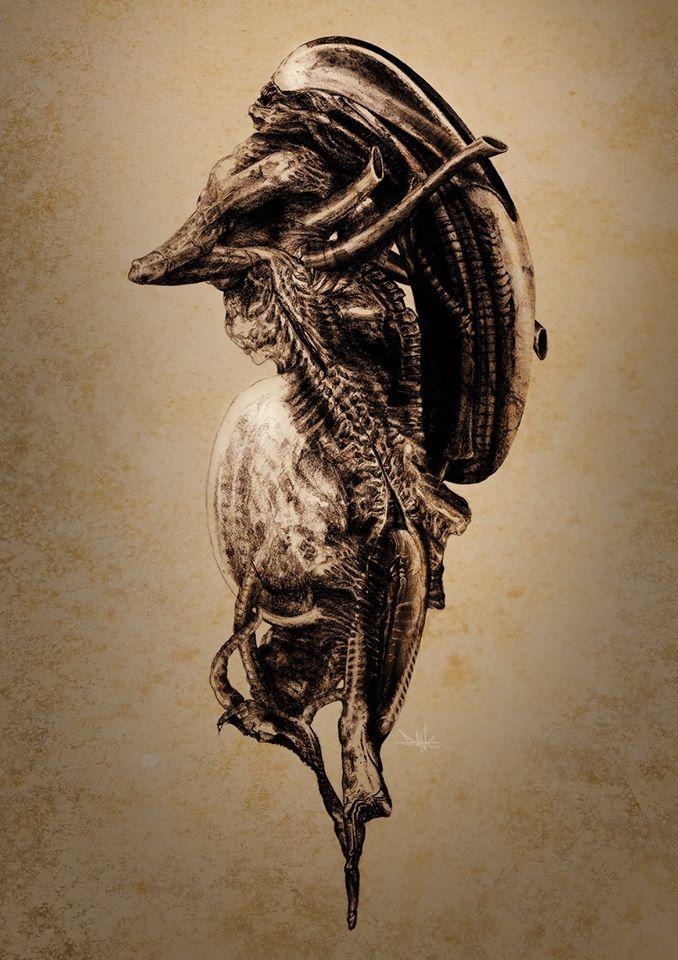 Dane Hallett - Alien Covenant (13)