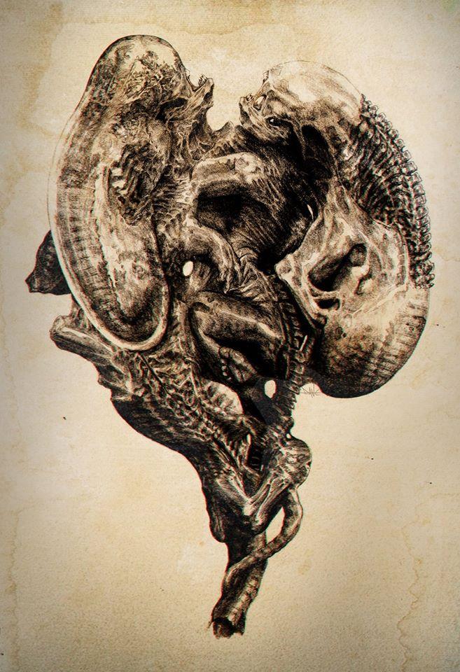 Dane Hallett - Alien Covenant (15)
